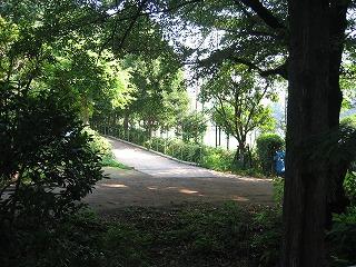 緑あふれる公園(左側)