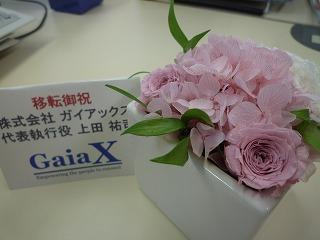 小さくても存在感のあるお花