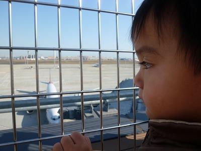 飛行機を見つめる息子