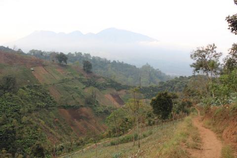 東ジャワでトレイルラン:下り坂を「ひゃっほー!」と下りながら、遠くの山に見守られていることの快感