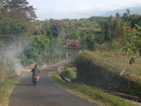東ジャワでトレイルラン:地元の人しか走らない、のどかな空間