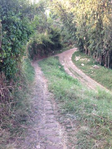 東ジャワでトレイルラン:ワクワクしませんか?この風景