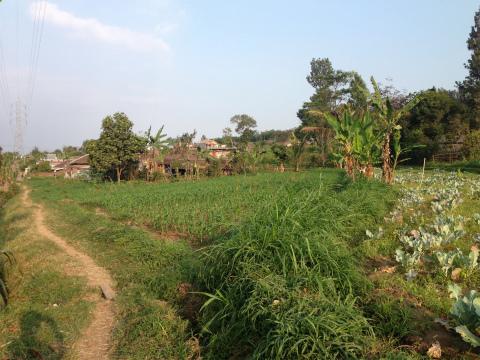 バトゥのアグロウィサタ_Agrowisata,Batu
