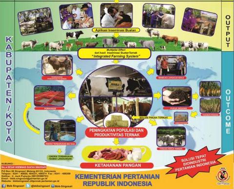インドネシア全体への貢献