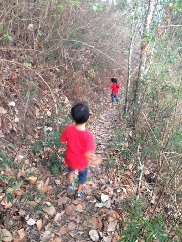 坂を駆け下りる子どもたち