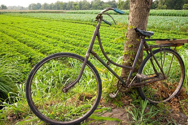 ジャワ語 ジャワ島 自転車