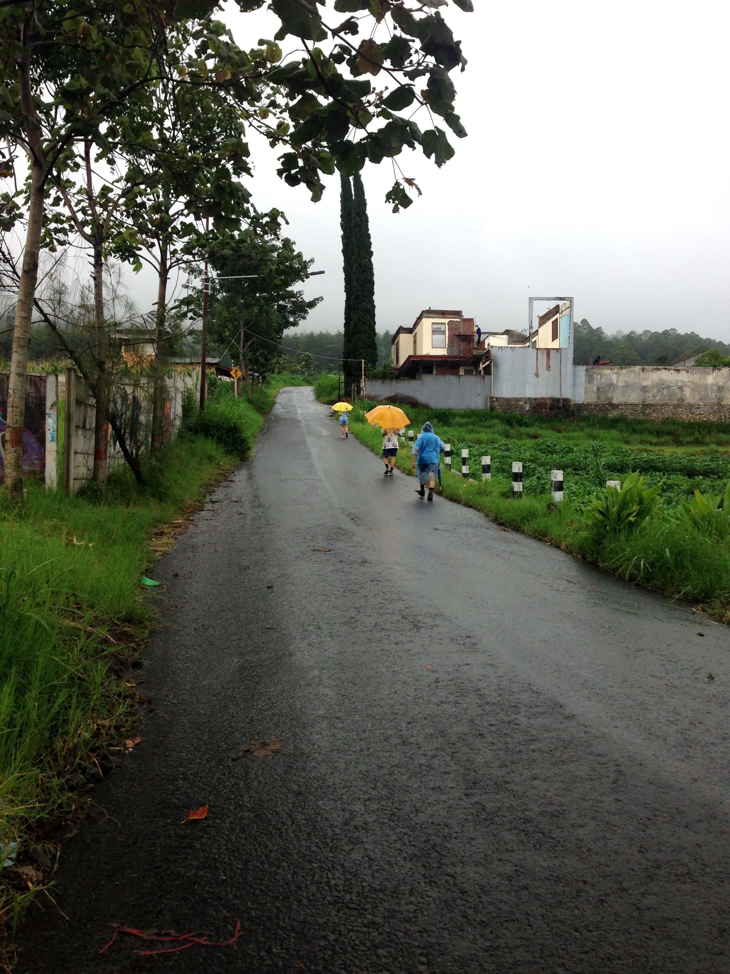 アグロウィサタで(Agrowisata)トレイルラン&ウォーキング
