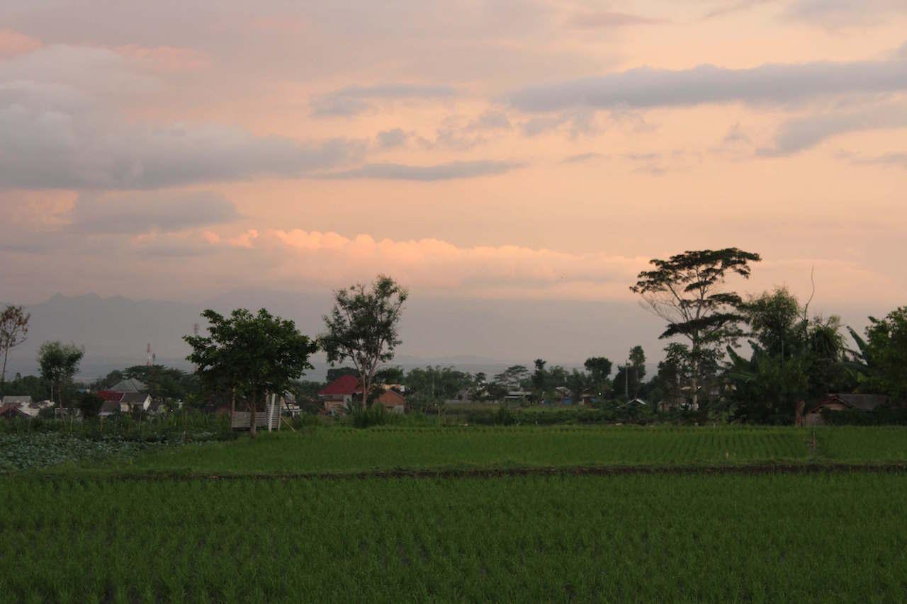知人の家の庭から撮影した、東ジャワ「マラン」の夕方の光景