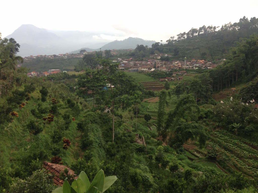 インドネシア:東ジャワ、バトゥの避暑地セレクタ(Selecta)でトレイルラン&ウォーキング