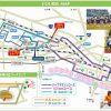 桜のもとでハーフマラソン(第18回熊谷さくらマラソン)(1)