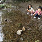 高尾山で、4歳と3歳の子供たちの成長を確認する!