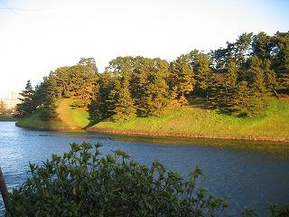 皇居の緑。本当に朝日に映えます