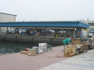 たくさんの出店が並ぶ勝浦港。水揚げされたばかりの鮮魚をそのまま丼ぶりでいただける!