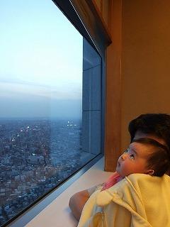 大空に興味津々の我が娘。桜が見られるのも、もうすぐ