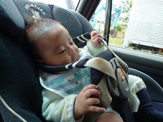 息子は車内でシートベルトをいじりながら