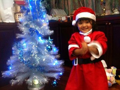 クリスマスツリーが大好き!