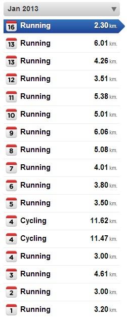 2013年1月の走行記録(ランニングアプリ RunKeeperを使用)