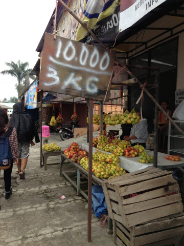 東ジャワ・バトゥのリンゴ。3kgで1万ルピア(約90円)で販売されていました(2014年2月撮影)