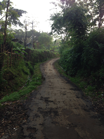 家の近所でジャワの素朴な絶景を発見