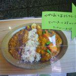 パクチーハウス東京|手食で味わう「地球を救うカレーライス」の魅力