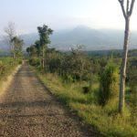 インドネシアの山で「トレラン」デビュー。駆け抜ける楽しさに驚き!