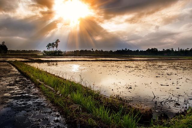 インドネシア 大自然